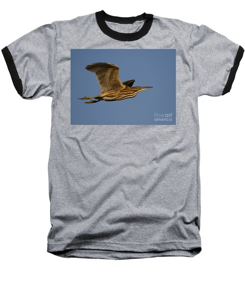 American Bittern Flight Baseball T-Shirt by Myrna Bradshaw