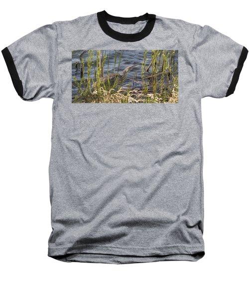 American Bittern Hunting Baseball T-Shirt