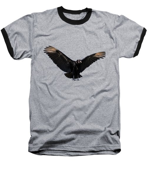 American Black Vulture Baseball T-Shirt by Zina Stromberg