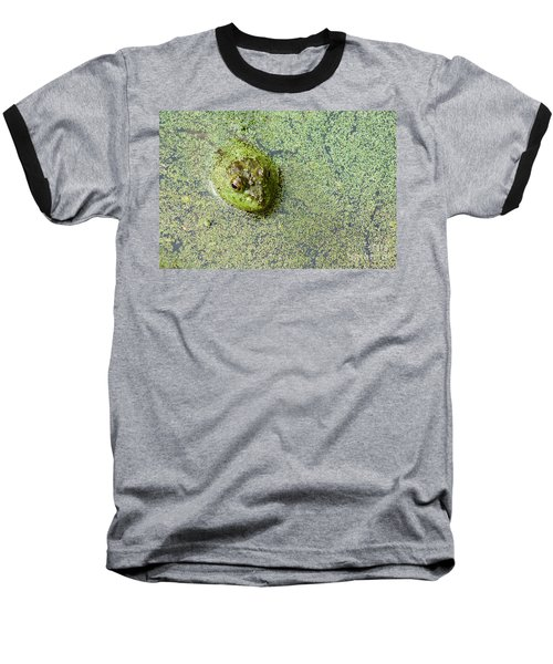 American Bullfrog Baseball T-Shirt by Sean Griffin