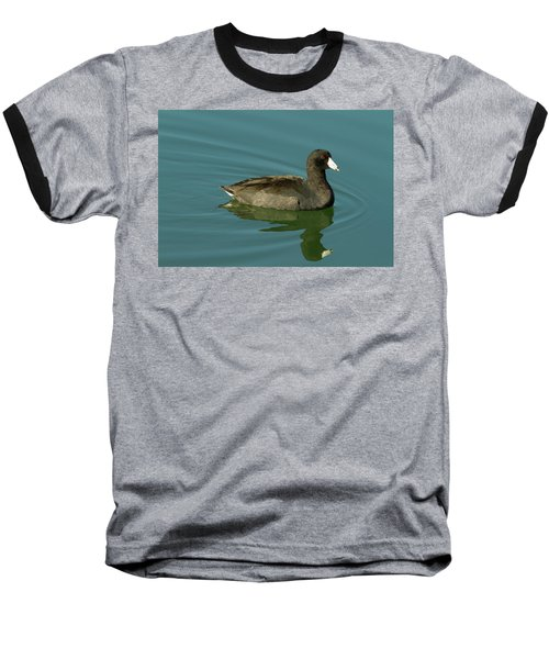 American Coot Baseball T-Shirt