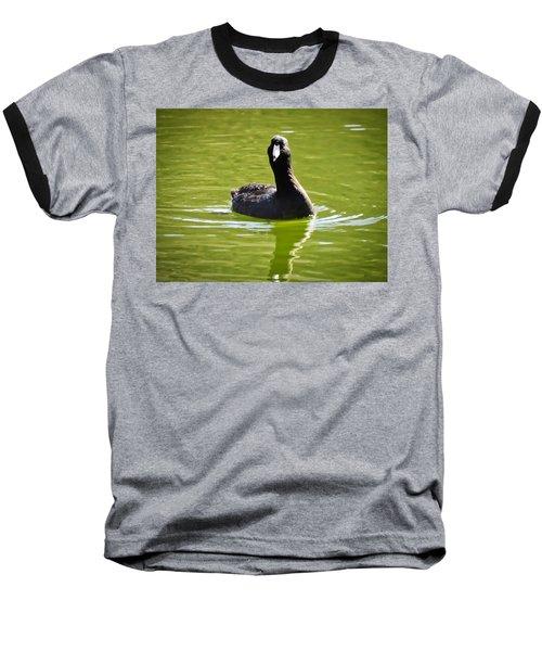American Coot Portrait Baseball T-Shirt