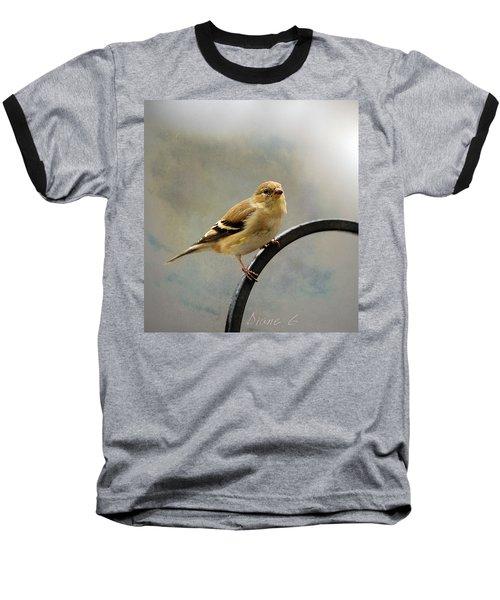 American Goldfinch Baseball T-Shirt by Diane Giurco