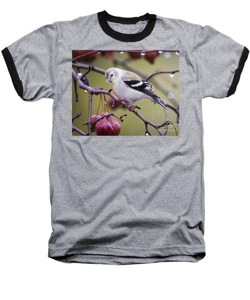 American Goldfinch In The Rain Baseball T-Shirt