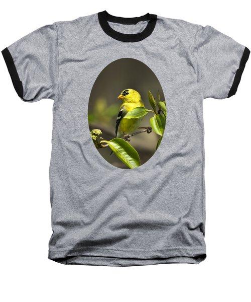 American Goldfinch On Branch Baseball T-Shirt by Christina Rollo