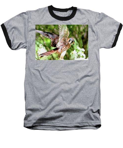 American Kestrel Hawk Baseball T-Shirt