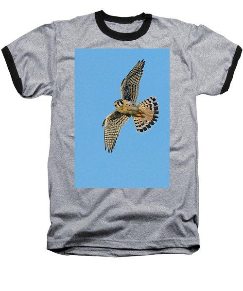 American Kestrel  Baseball T-Shirt