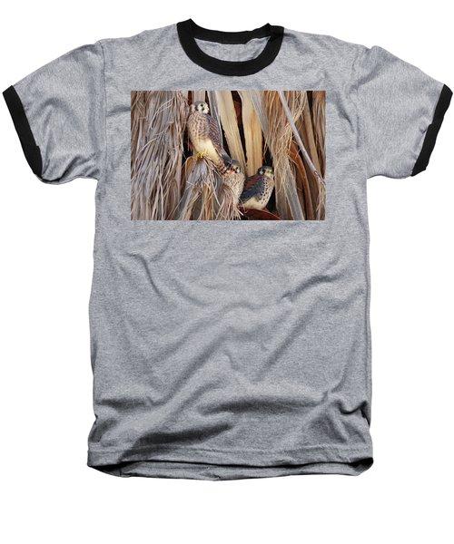 Baseball T-Shirt featuring the photograph American Kestrels by Dan Redmon