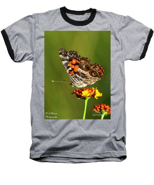American Painted Lady Baseball T-Shirt