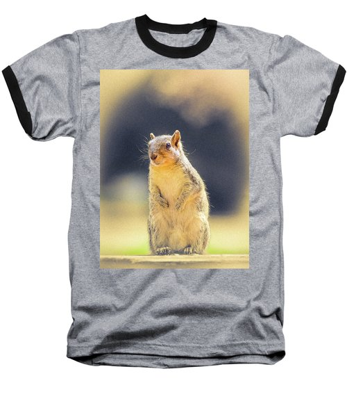 American Red Squirrel Baseball T-Shirt