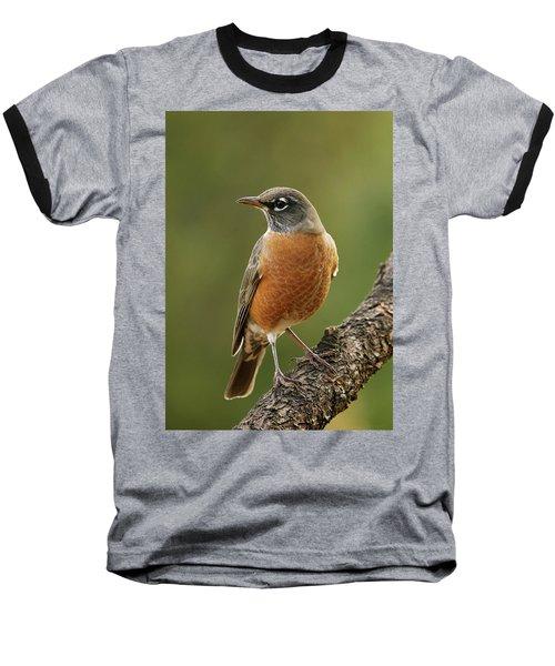 Baseball T-Shirt featuring the photograph American Robin by Doug Herr
