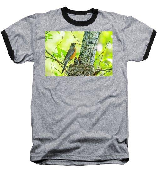 American Robin Feeding Chicks Baseball T-Shirt