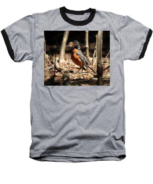 American Robin New York Baseball T-Shirt