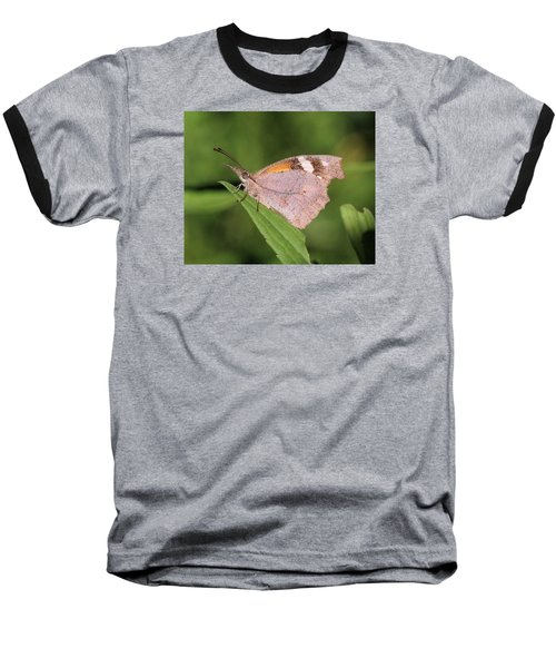 Baseball T-Shirt featuring the photograph American Snout by Doris Potter