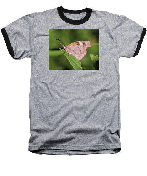 American Snout Baseball T-Shirt by Doris Potter
