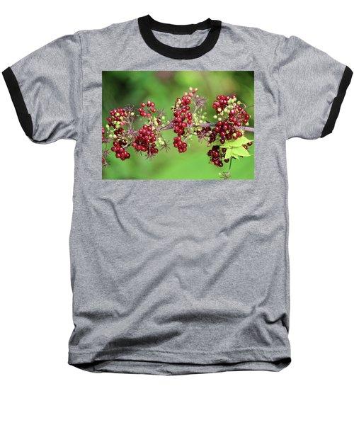 American Spikenard Baseball T-Shirt