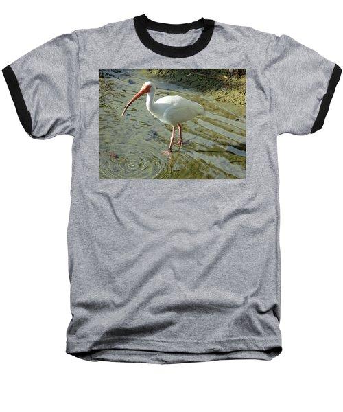 American White Ibis Baseball T-Shirt