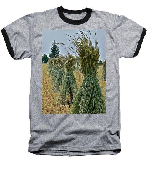 Amish Harvest Baseball T-Shirt