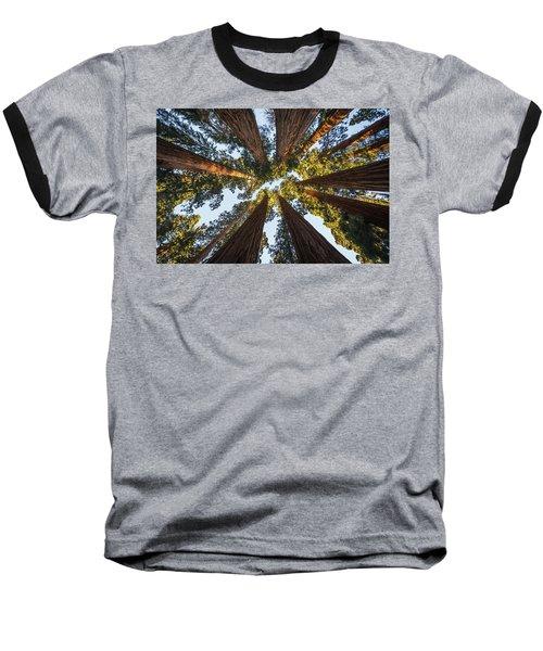 Amongst The Giant Sequoias Baseball T-Shirt by Alpha Wanderlust