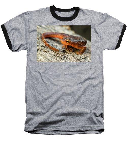 Amphibious Baseball T-Shirt by Scott Warner