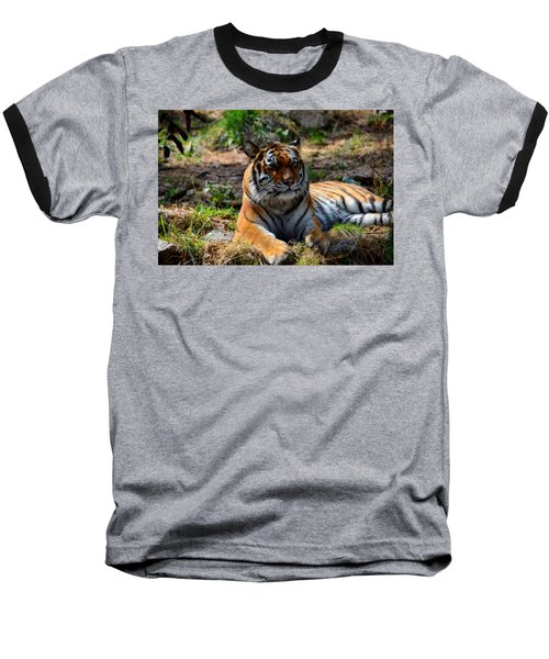 Baseball T-Shirt featuring the mixed media Amur Tiger 10 by Angelina Vick