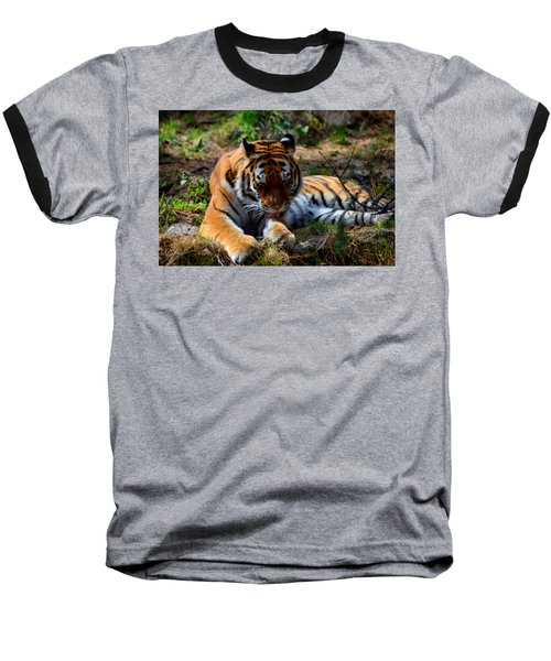Baseball T-Shirt featuring the mixed media Amur Tiger 2 by Angelina Vick