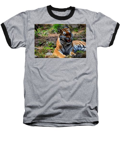 Baseball T-Shirt featuring the mixed media Amur Tiger 3 by Angelina Vick
