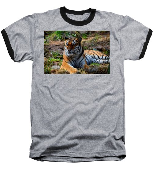 Baseball T-Shirt featuring the mixed media Amur Tiger 8 by Angelina Vick