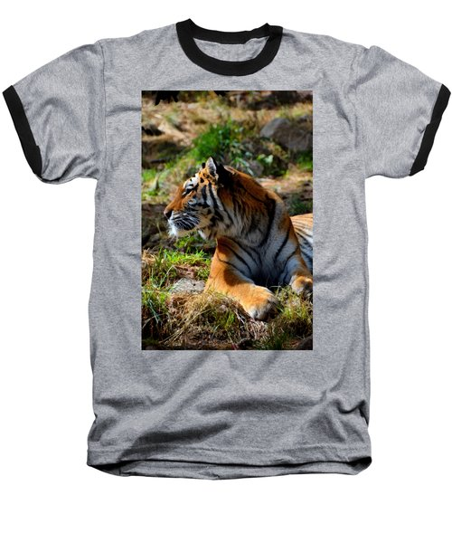 Baseball T-Shirt featuring the mixed media Amur Tiger 9 by Angelina Vick