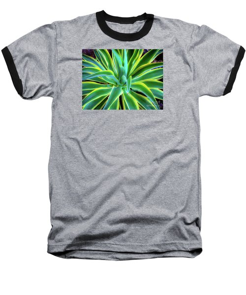 An Agave In Color  Baseball T-Shirt