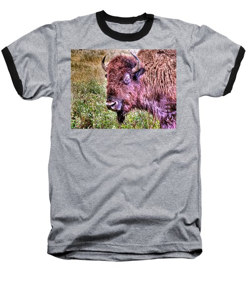 An Astonished Bison Baseball T-Shirt