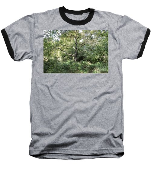 An Old One In The Forest Baseball T-Shirt