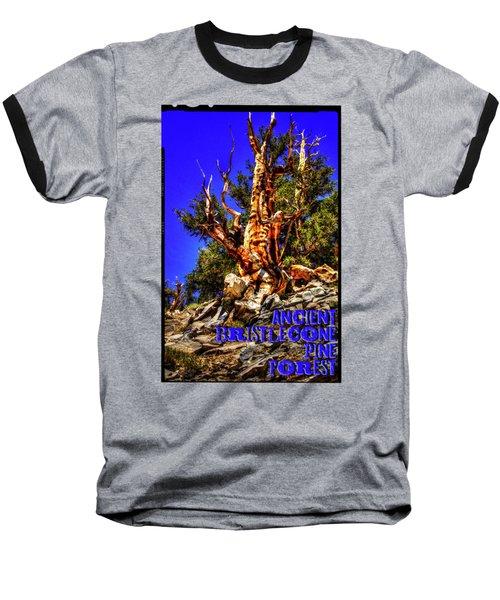 Ancient Bristlecone Pine Forest Baseball T-Shirt