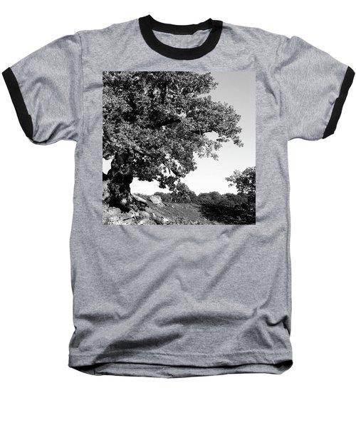 Ancient Oak, Bradgate Park Baseball T-Shirt by John Edwards