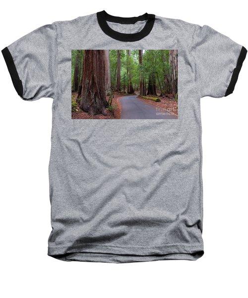 Ancient Redwoods Baseball T-Shirt