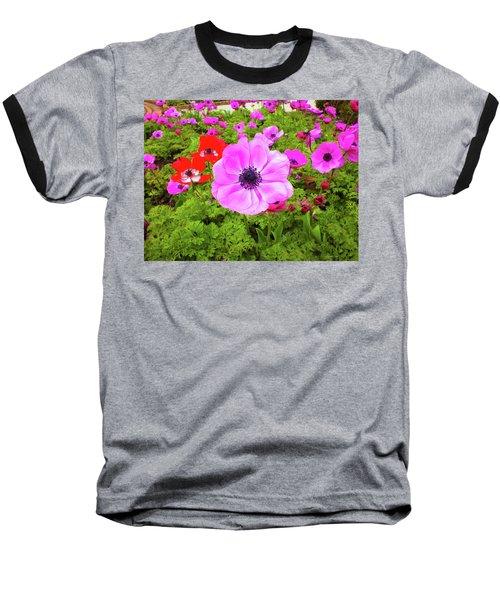 Anemone City  Baseball T-Shirt