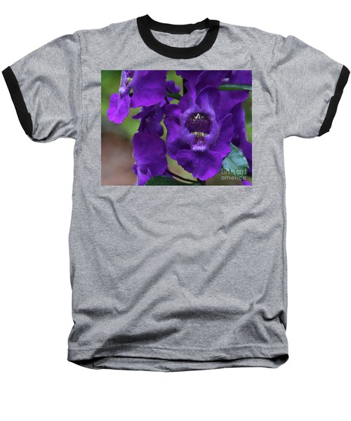 Angelonia Angustifolia Baseball T-Shirt