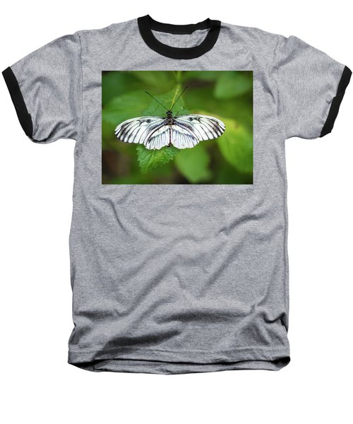 Angry Butterfly With A Mustache Baseball T-Shirt