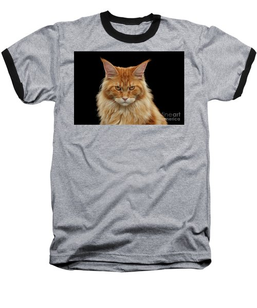 Angry Ginger Maine Coon Cat Gazing On Black Background Baseball T-Shirt by Sergey Taran