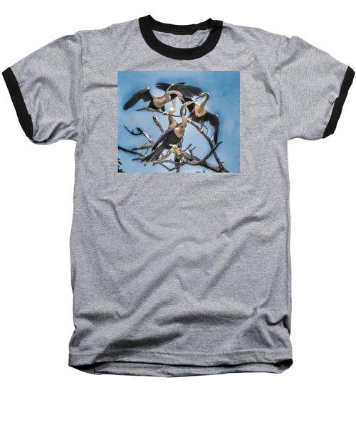 Anhinga Feeding Time Baseball T-Shirt