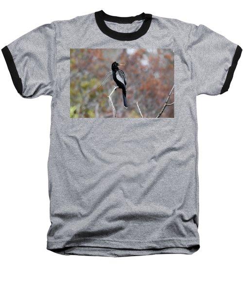 Anhinga Baseball T-Shirt by Gary Wightman