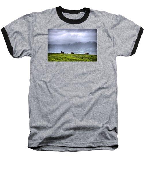 Animals Livestock-03 Baseball T-Shirt