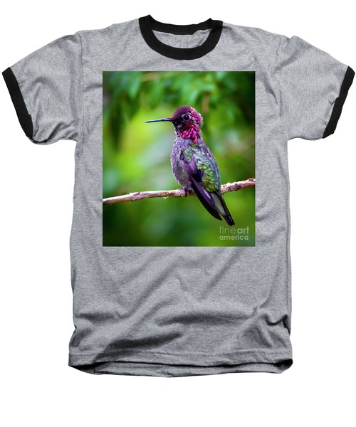 Anna Humming Bird Baseball T-Shirt