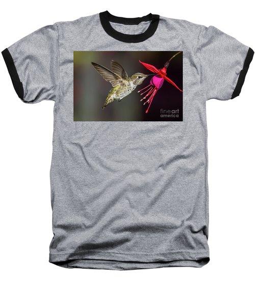 Anna Immature Hummingbird Baseball T-Shirt