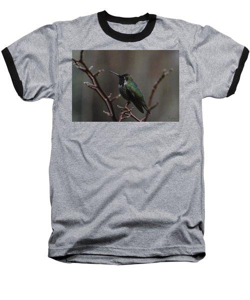 Anna Rainwings Baseball T-Shirt