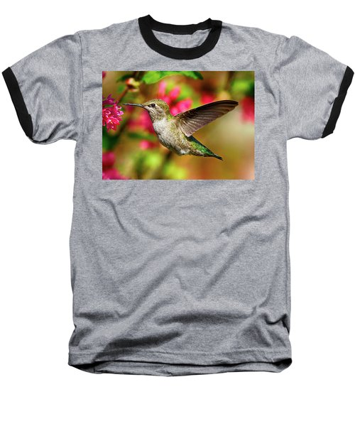 Anna's Hummingbird Baseball T-Shirt