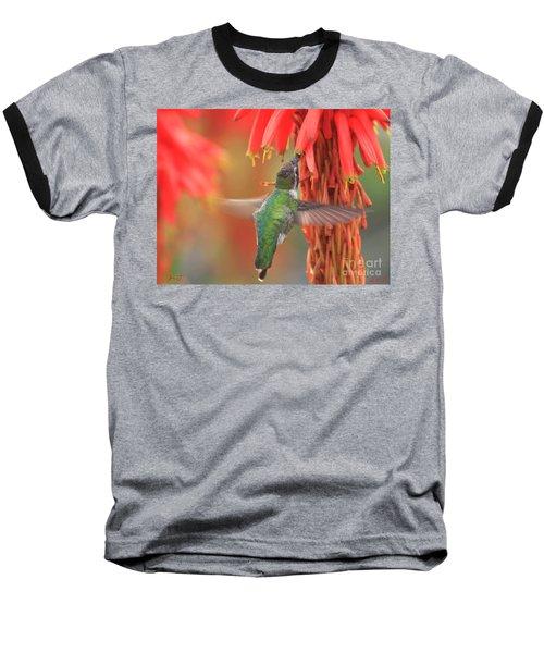 Annas Garden Baseball T-Shirt