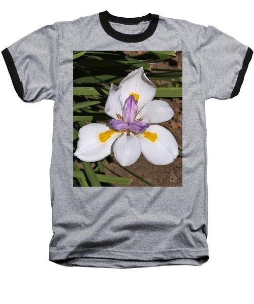 Baseball T-Shirt featuring the photograph Another Lily by Daniel Hebard