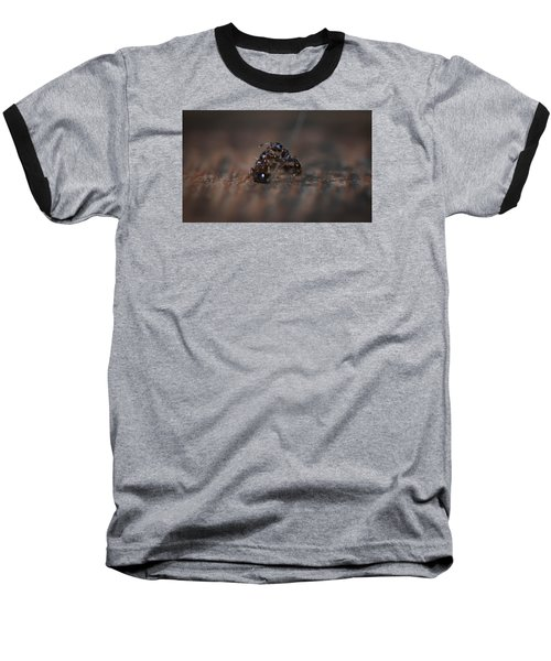 Ant Fight Baseball T-Shirt