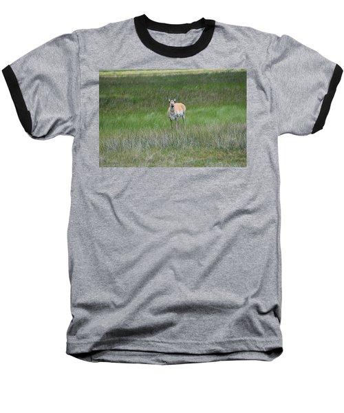 Prong Horned Antelope Lake John Swa Co Baseball T-Shirt